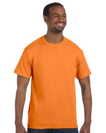 5.4 oz., 100% Cotton T-Shirt with TearAway™ Label