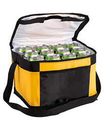Port Authority BG89 12 Pack Cooler at bigntallappa